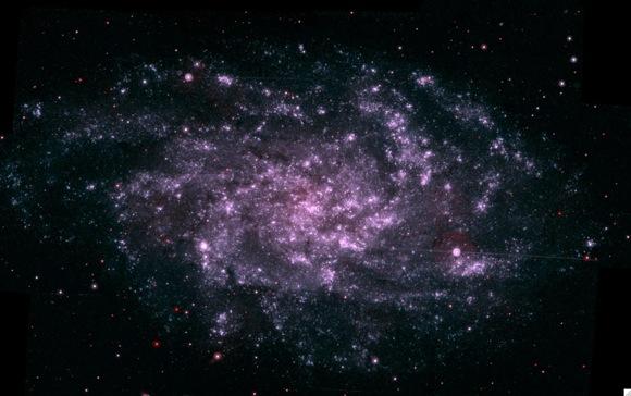 M33. Image credit: NASA/Swift
