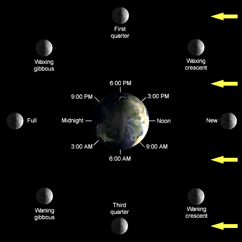 Schedule of Moon Phases