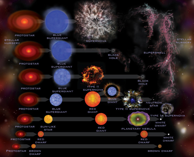 What is the Life Cycle of Stars? - Universe Today