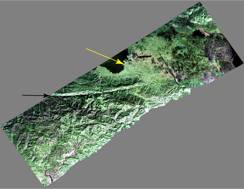 False-color composite image of the Port-au-Prince, Haiti region, taken Jan. 27, 2010 by NASA's UAVSAR airborne radar. The city is denoted by the yellow arrow; the black arrow points to the fault responsible for the Jan. 12 earthquake. Image credit: NASA