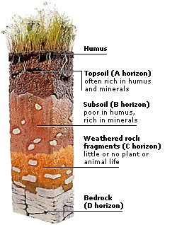Soil Layers Image Credit: Discovery