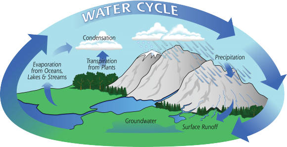 Diagram of the Water Cycle. Credit: NASA Precipitation Education