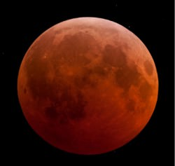 Lunar Eclipse from New Jersey 12-21-2010.  Credit:  Robert Vanderbei