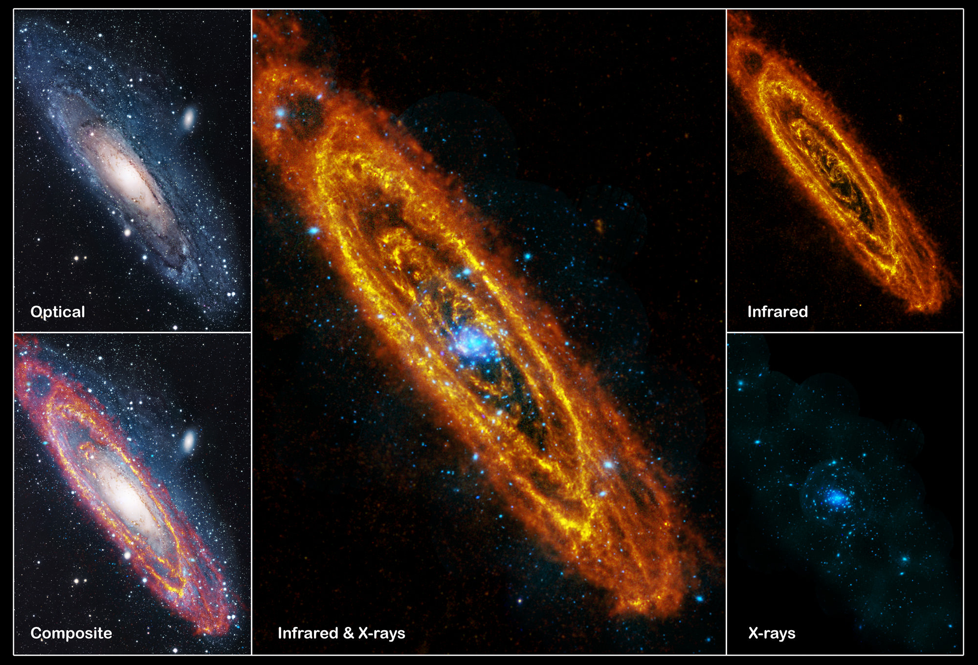an analysis of the universe and the birth of the star In galaxies like our milky way, if you collected all the stars born ever   a  whopping 13 billion light years away, meaning the universe itself was.