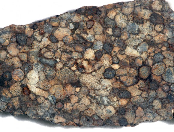 A slice of the NWA 5205 meteorite from the Sahara Desert displays wall-to-wall chondrules. Credit: Bob King
