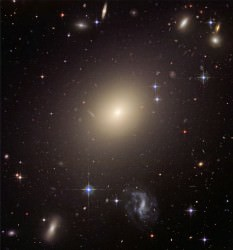 Elliptical galaxy ESO 325-G004. ESO