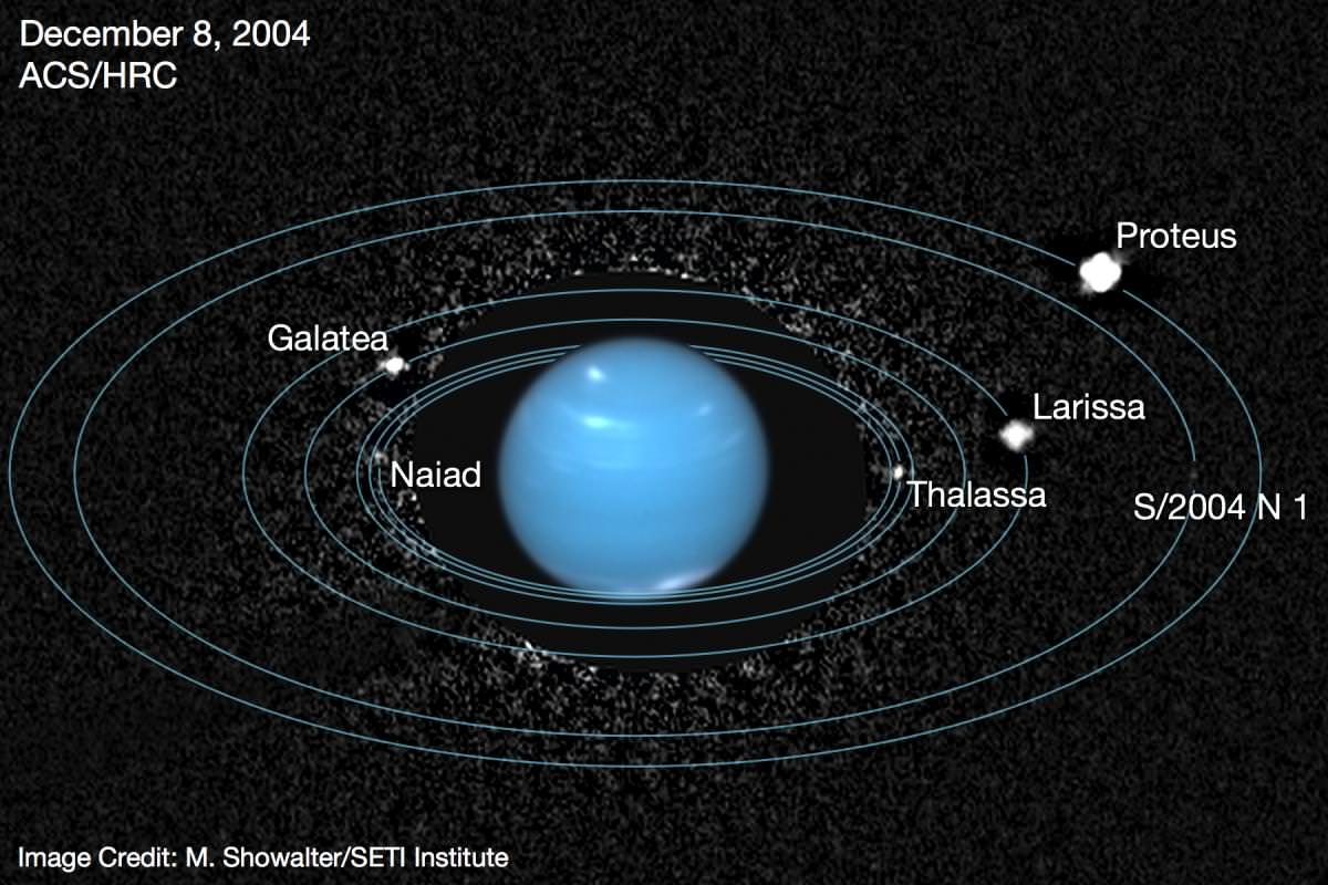 Neptune's system of moons and rings visualized. Credit: SETI