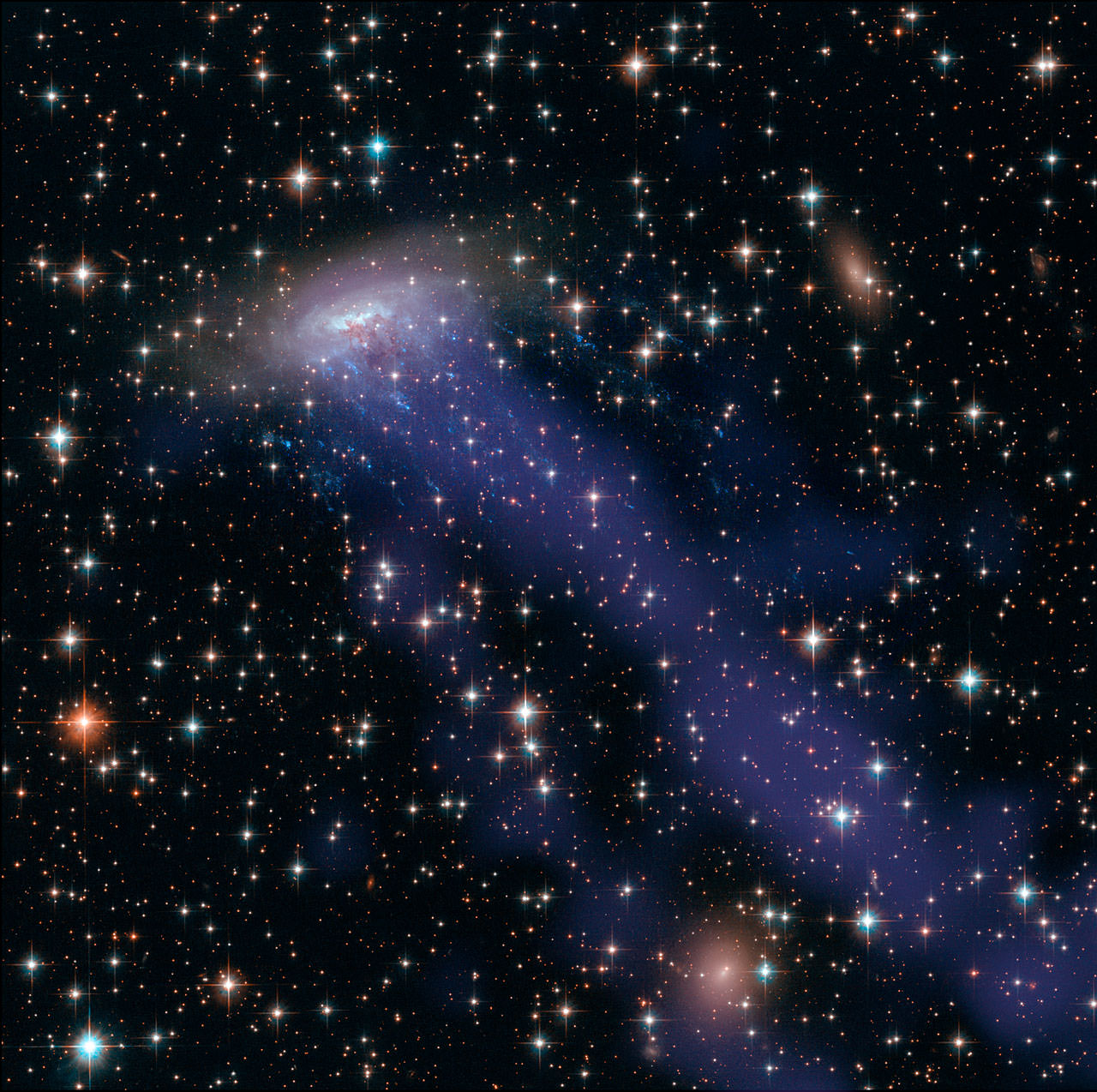 A gas stream from galaxy ESO 137-001 shines brightly in X-rays captured by the Chandra X-Ray Observatory. The galaxy is captured in other wavelengths by the Hubble Space Telescope. Credit: NASA, ESA, CXC