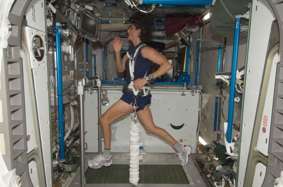 Expedition 32 astronaut Sun Williams uses the COLBERT (Combined Operational Load Bearing External Resistance Treadmill) in the Tranquility node of the International Space Station in August 2012. The treadmill was named after comedian Stephen Colbert. Credit: NASA