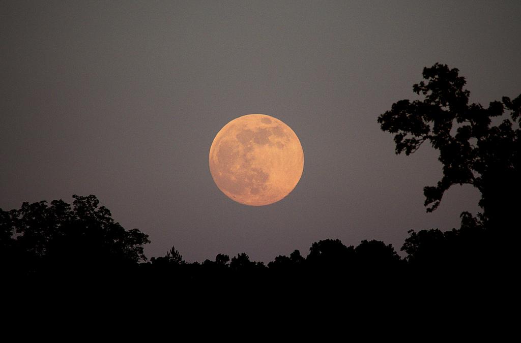 "The June 2012 ""Honey Moon"" rising. Photo credit: Stephen Rahn."