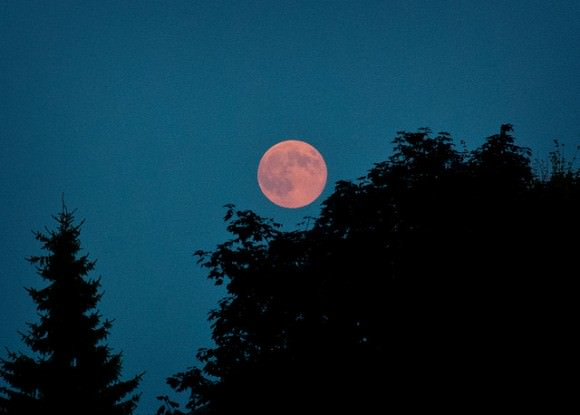 'Super' Moon, August 10, 2014, taken with Nikon D80 from Ottawa, Canada. Credit and copyright: Andrew Symes.