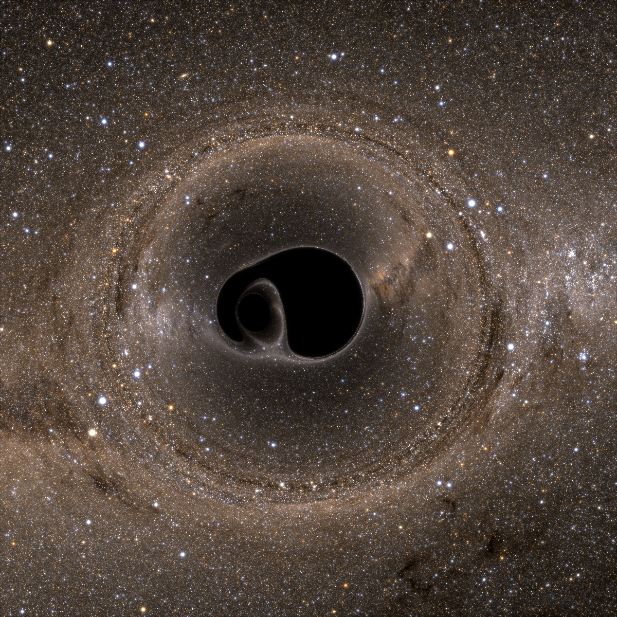 A binary black hole system, viewed edge-on. This pair of extremely dense objects twists and warps spacetime  as the two black holes spiral in toward one another. Image Credit: Bohn, Throwe, Hébert, Henriksson, Bunandar, Taylor, Scheel (see http://www.black-holes.org/lensing)