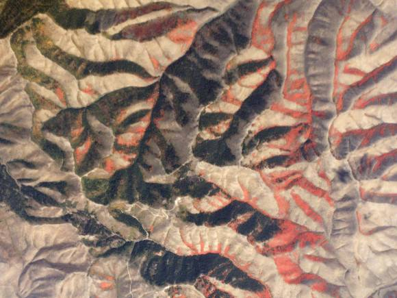 "Writes Planet Labs of this image: ""Vivid red maples stand out against the dark green evergreen forest and brown scrub landscape of the Pleasantview Hills."" Credit: Planet Labs"