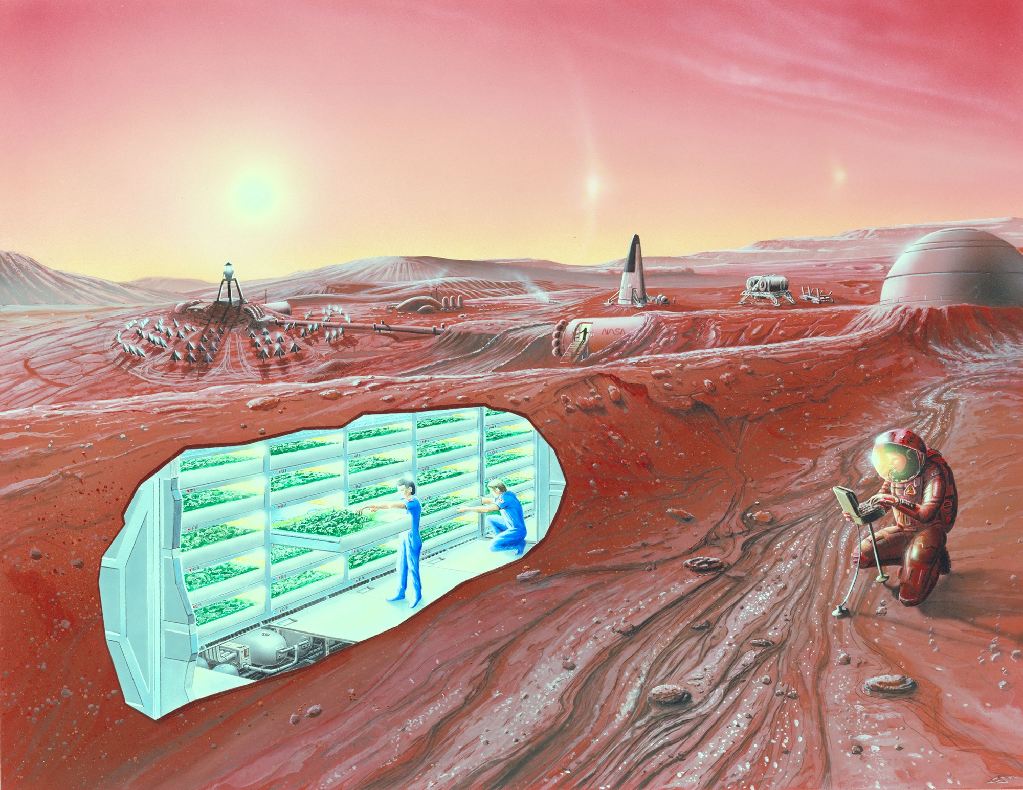 colonizing mars Training in antarctica or on the international space station won't provide adequate preparation for human settlement on mars, according t.