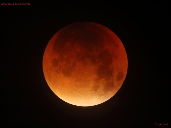 A bloody Moon iindeed! Credit: Chris Lyons