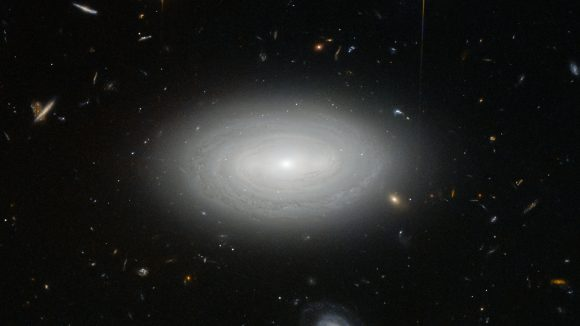 Galaxy MCG+01-02-015 is so isolated that if our galaxy, the Milky Way, were to be situated in the same way, we would not have known of the existence of other galaxies until the 1960s Credit: ESA/Hubble & NASA and N. Gorin (STScI). Acknowledgement: Judy Schmidt