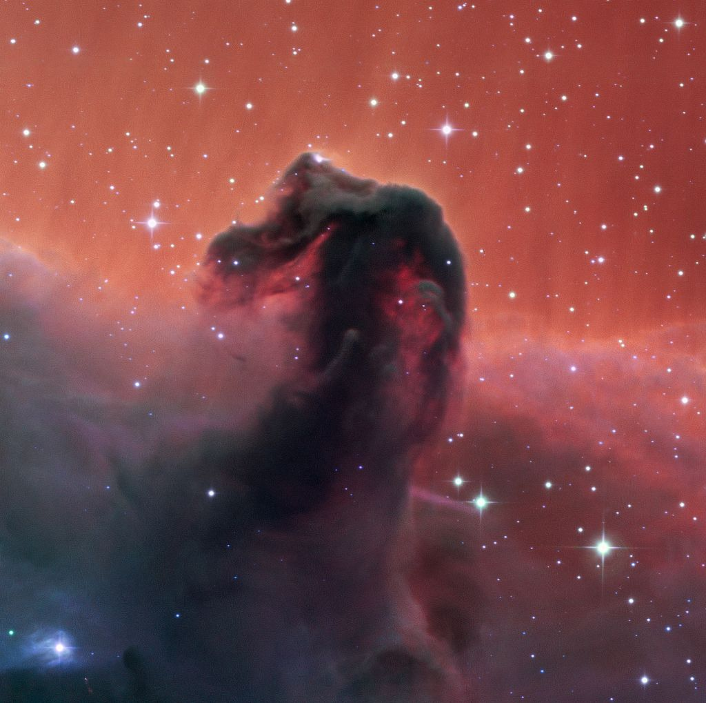 This first light image from the Callisto telescope at the SPECULOOS Southern Observatory (SSO) shows the famous Horsehead Nebula . First light for a newly commissioned telescope is a tremendously exciting time, and usually well-known astronomical objects such as this are captured to celebrate a new telescope commencing operations. Image Credit: SPECULOOS Team/E. Jehin/ESO